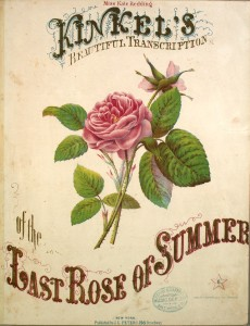 last_rose_of_summer